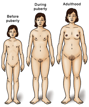 Three girls showing development: before puberty, during puberty, and adulthood.